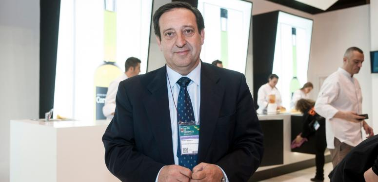 世界一のスペイン産オリーブオイル、将来への挑戦